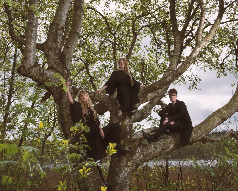 CW tree